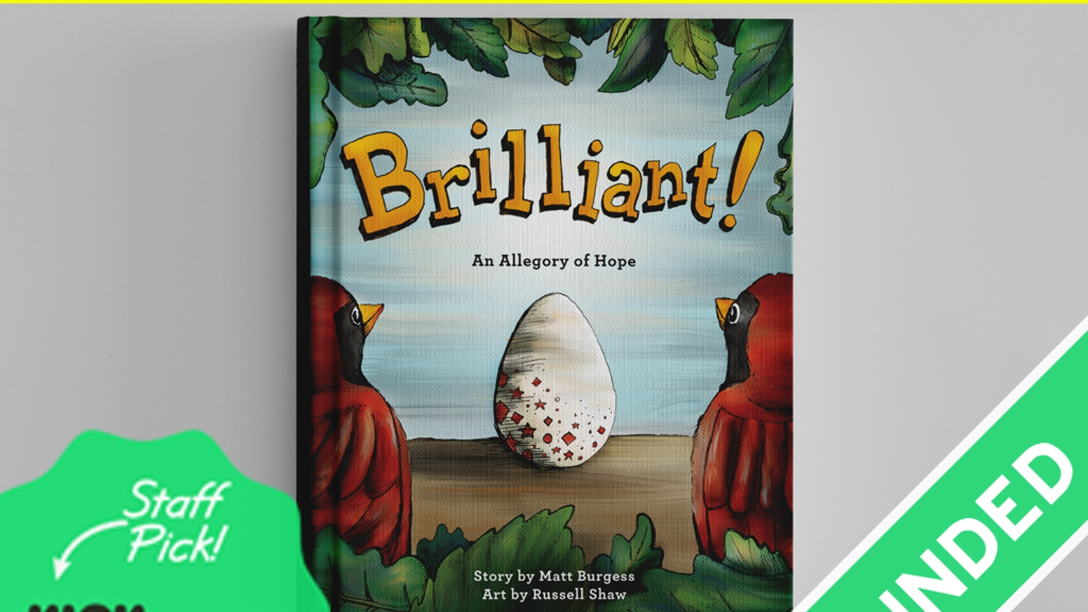 A whimsical adventure that unexpectedly inspires parents. A professionally illustrated book, especially for adoptive & foster families.