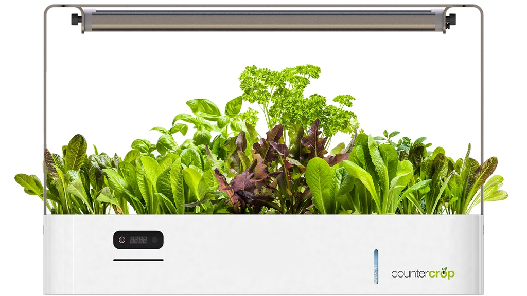 CounterCrop: The Modern Way to Grow Your Own Food project video thumbnail
