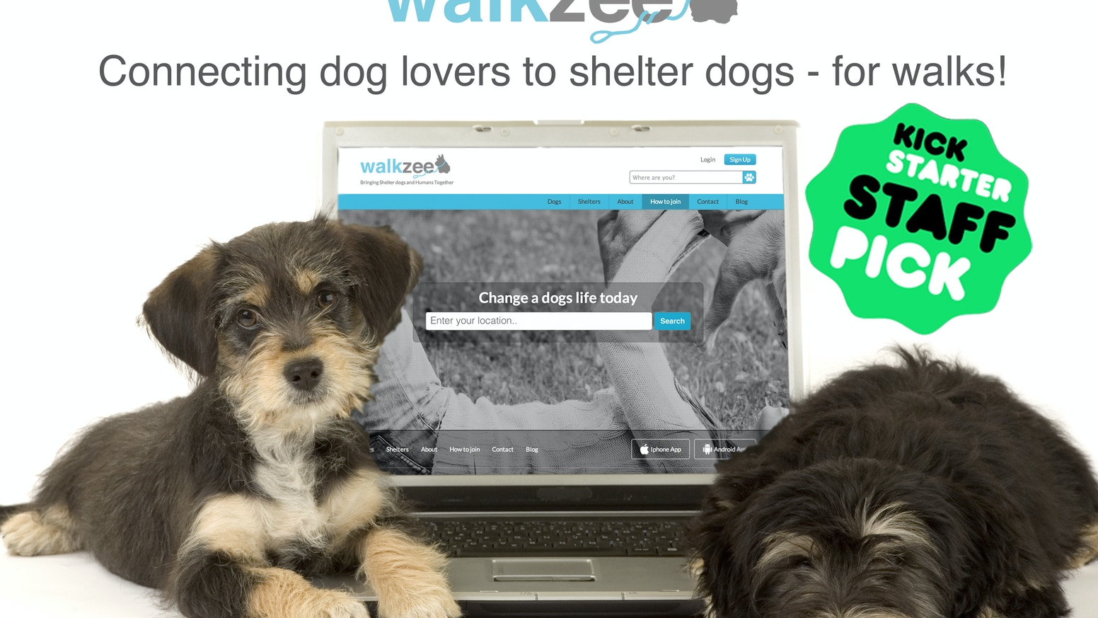 walkzee is the 1st free online platform connecting shelter dogs in need of a walk to dog lovers looking for a walking buddy!