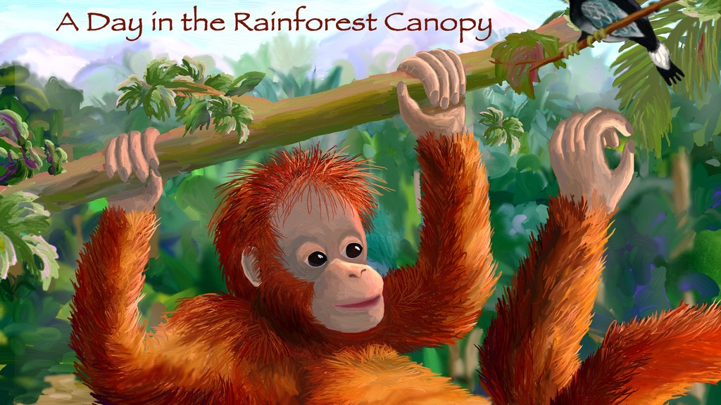 Orangutan: A day in the Rainforest Canopy project video thumbnail