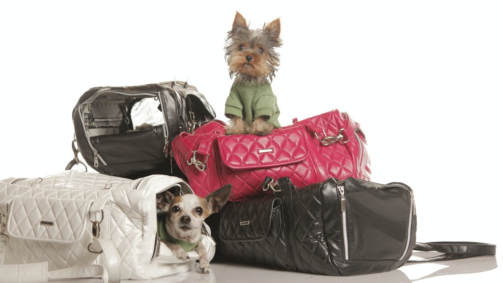 ZuGo Pet Handbag: Redefine Travel for Small Pets project video thumbnail