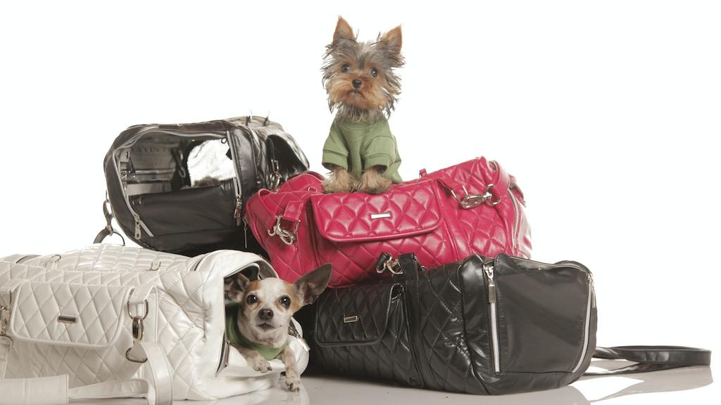 ZuGo Pet Handbag: Redefine Travel for Small Pets project video thumbnail