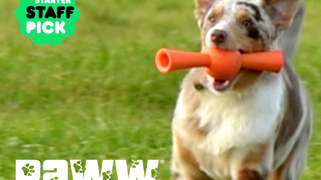 Smart fetch/treat toys from Paww …It's a whole new ballgame! project video thumbnail