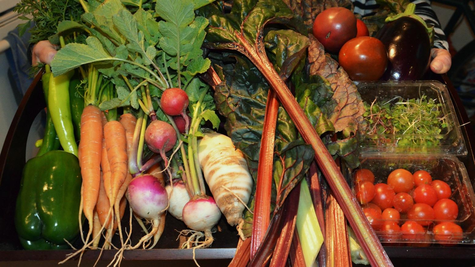 Planters Veggie Box Restaurant Story on veggie plants, veggie pringles, veggie animals, veggie garden, veggie baskets, veggie trees,