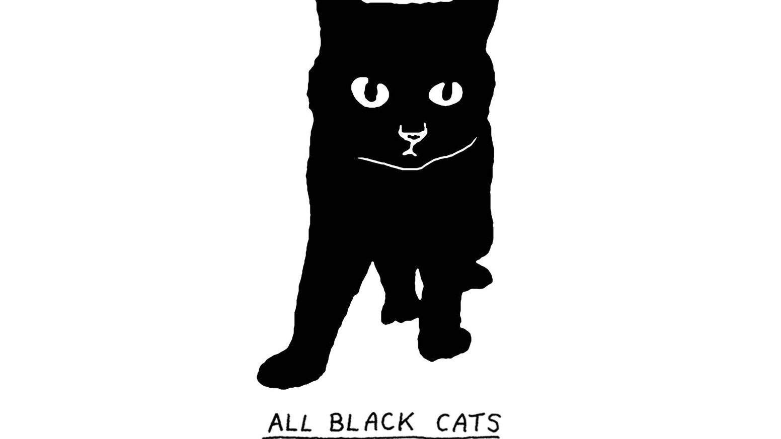 The debut book from STUDIO GOLDSPARKLE (Peter Arkle & Amy Goldwasser), 50 entirely hand-drawn, entirely unique, entirely All Black Cats