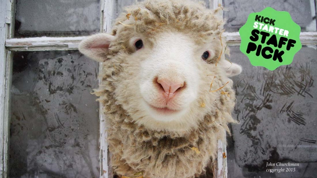 Sweet Pea & Friends in The SheepOver project video thumbnail