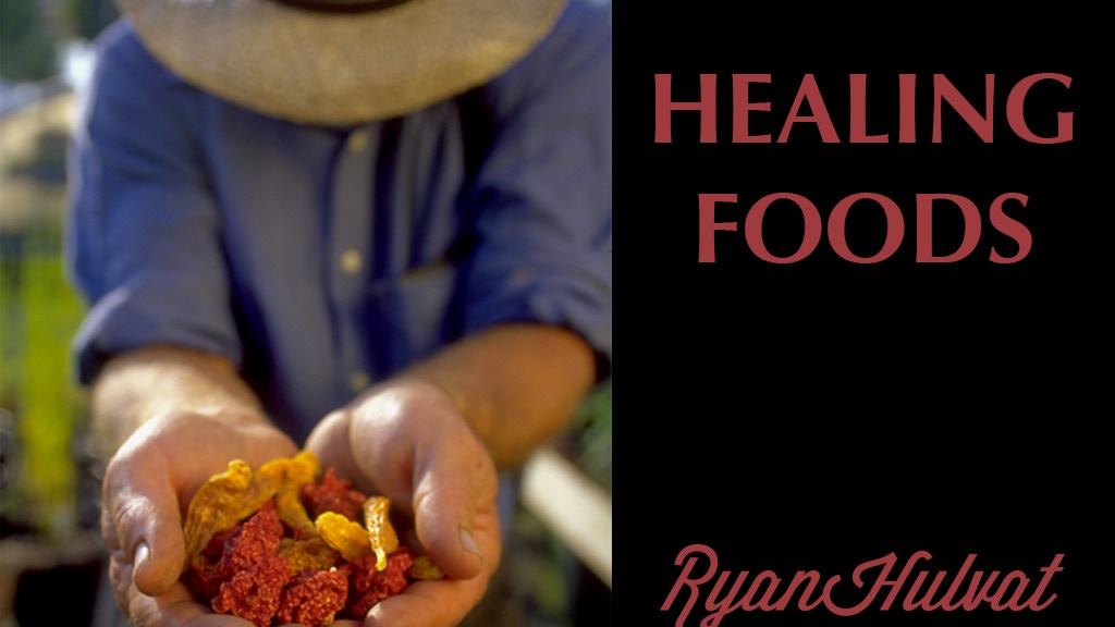 Healing foods by ryan hulvat kickstarter for Food s bar unloc