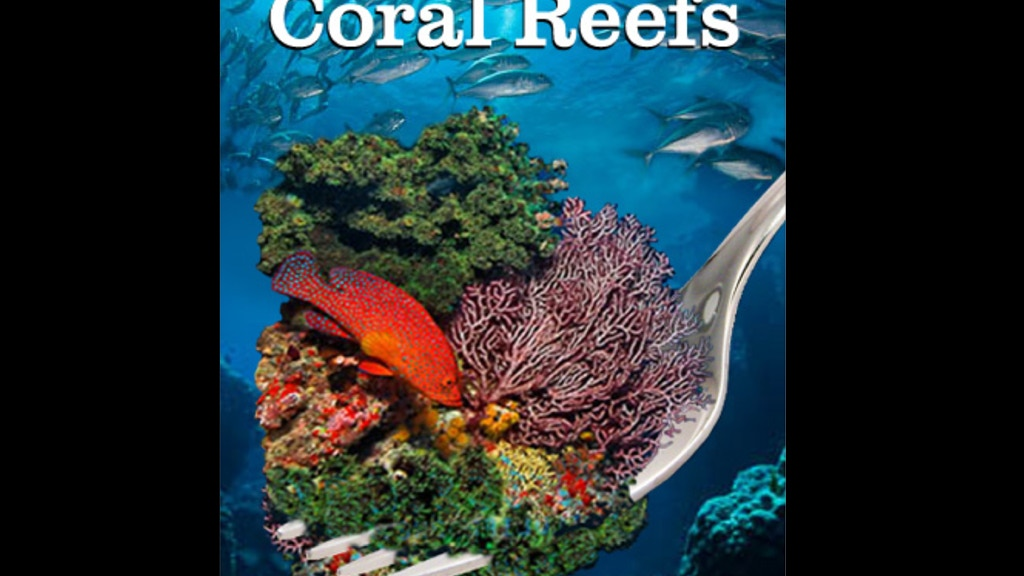 Consuming Coral Reefs project video thumbnail