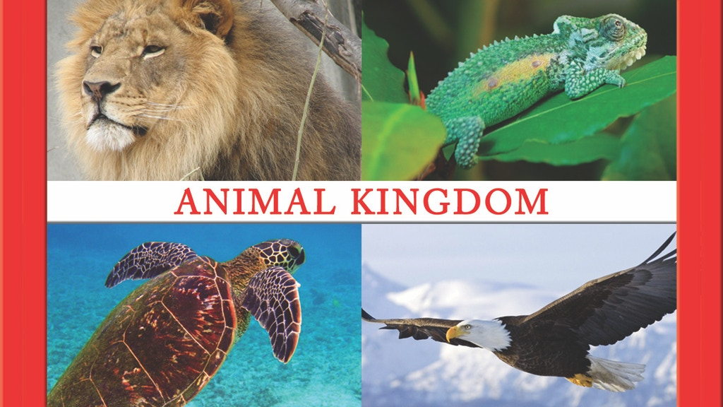Animal Kingdom Personality Cards project video thumbnail