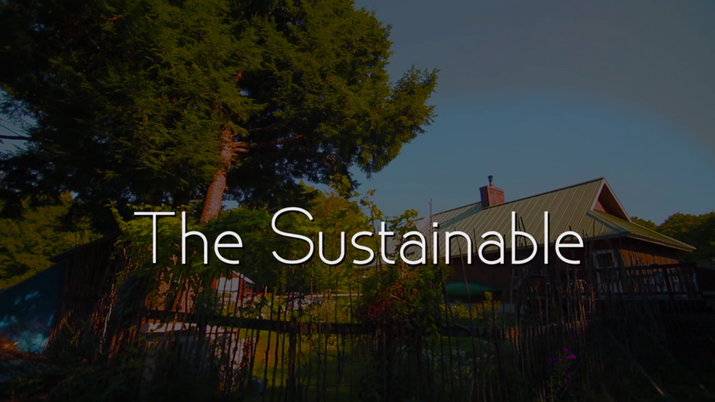 The Sustainable project video thumbnail