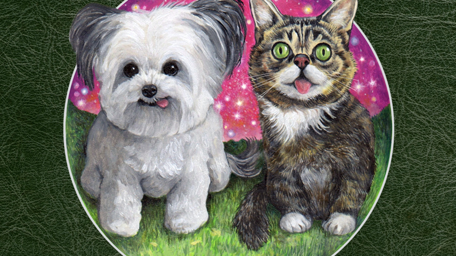 An exquisite, magical picture book starring Norbert and Lil BUB...with a grand purpose and a surprise ending!