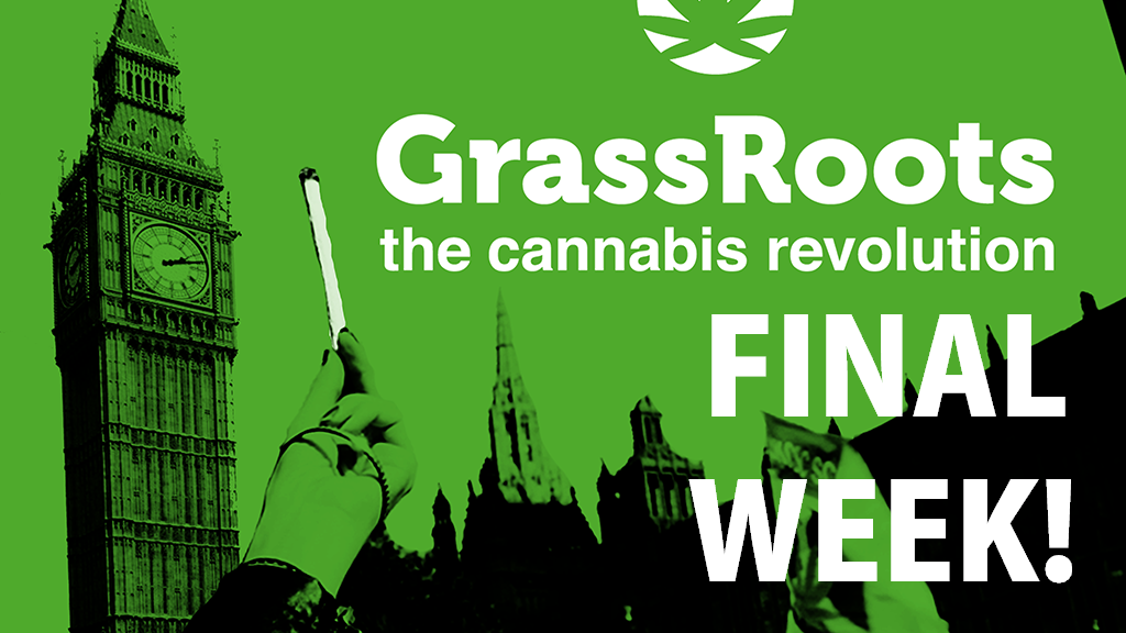 GrassRoots: The Cannabis Revolution project video thumbnail