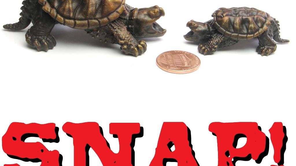 Bronze snapping turtles that fit in your pants. project video thumbnail