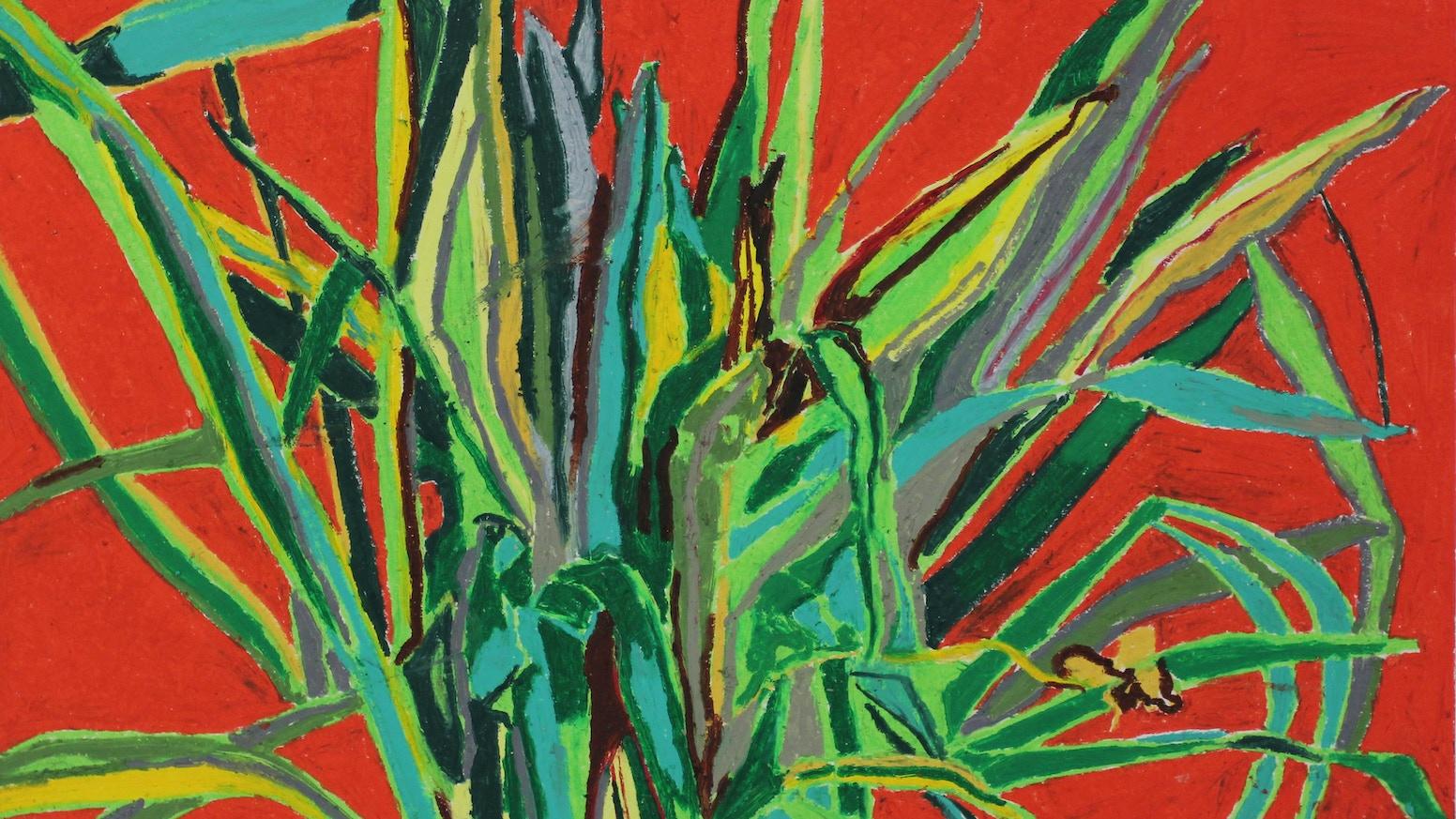 Framing Work for an Exhibition by Shanti Gorton — Kickstarter