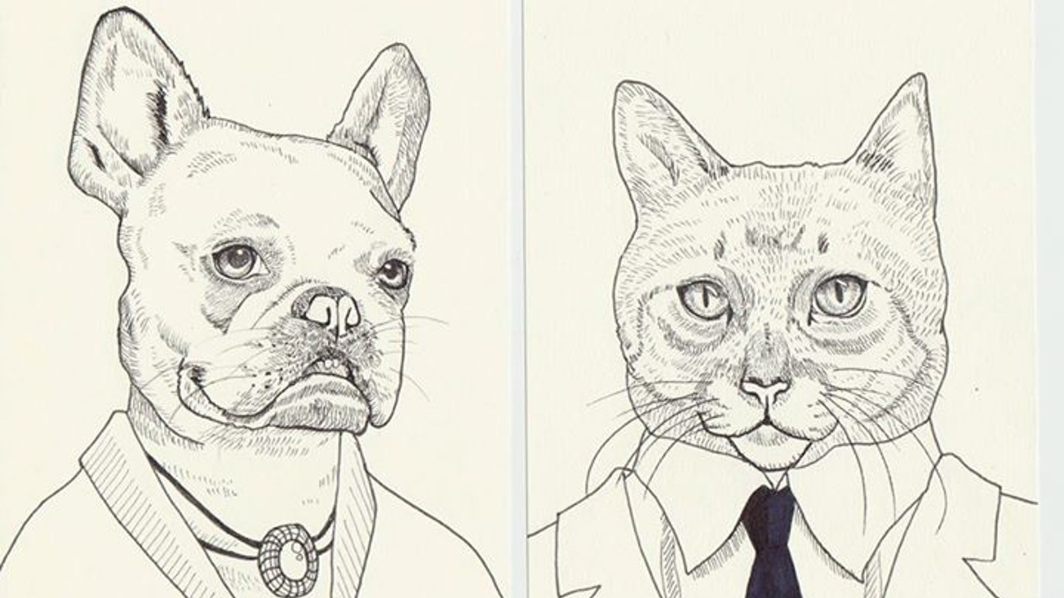 amazing animal portrait drawings by michael thompson kickstarter