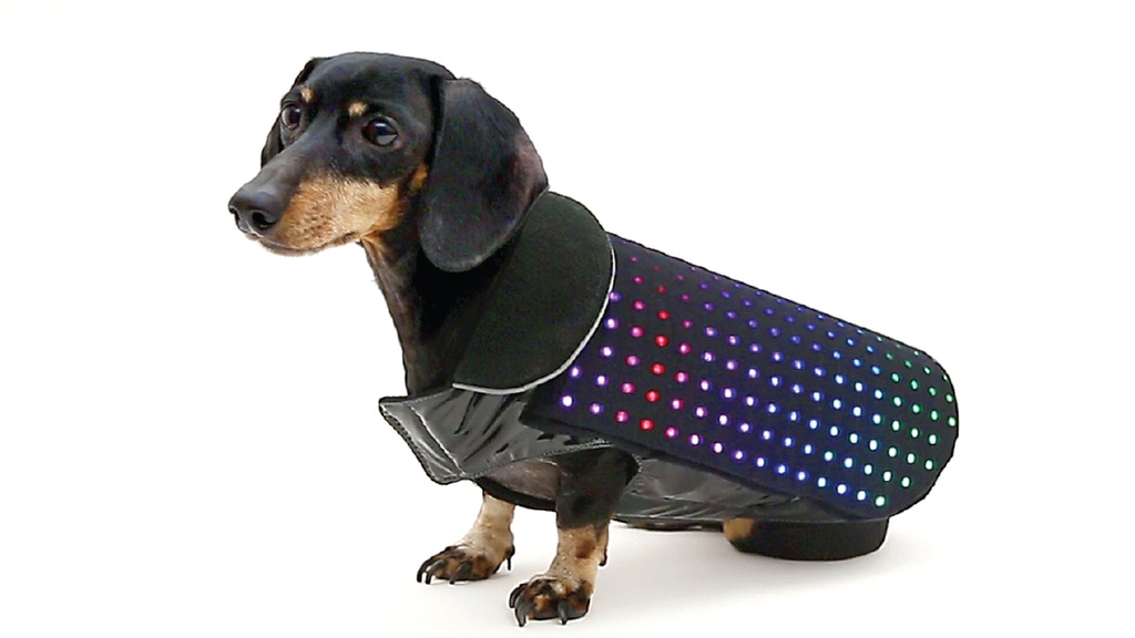 Disco Dog - The smartphone controlled LED dog vest project video thumbnail
