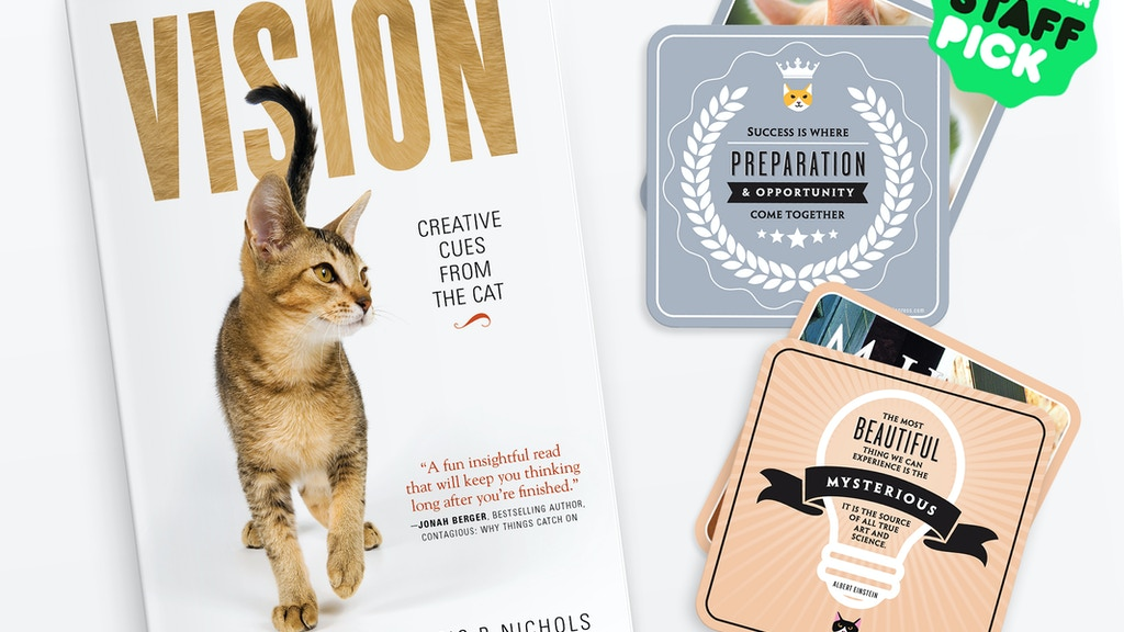 VISION: Creative Cues From The Cat project video thumbnail