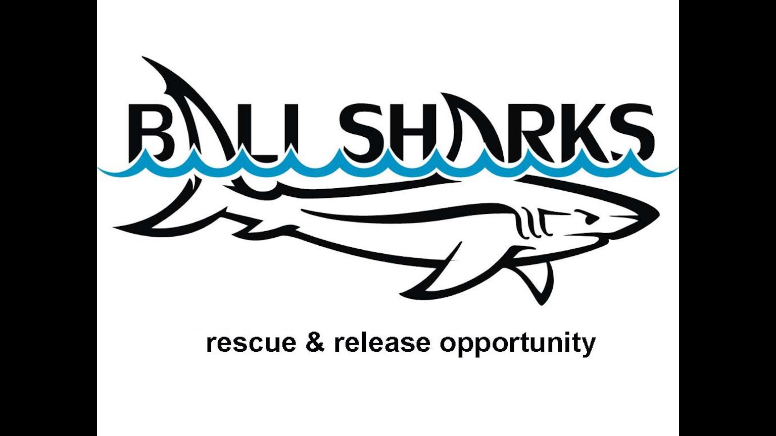Shark Rescue & Release (short film) by Bali Sharks