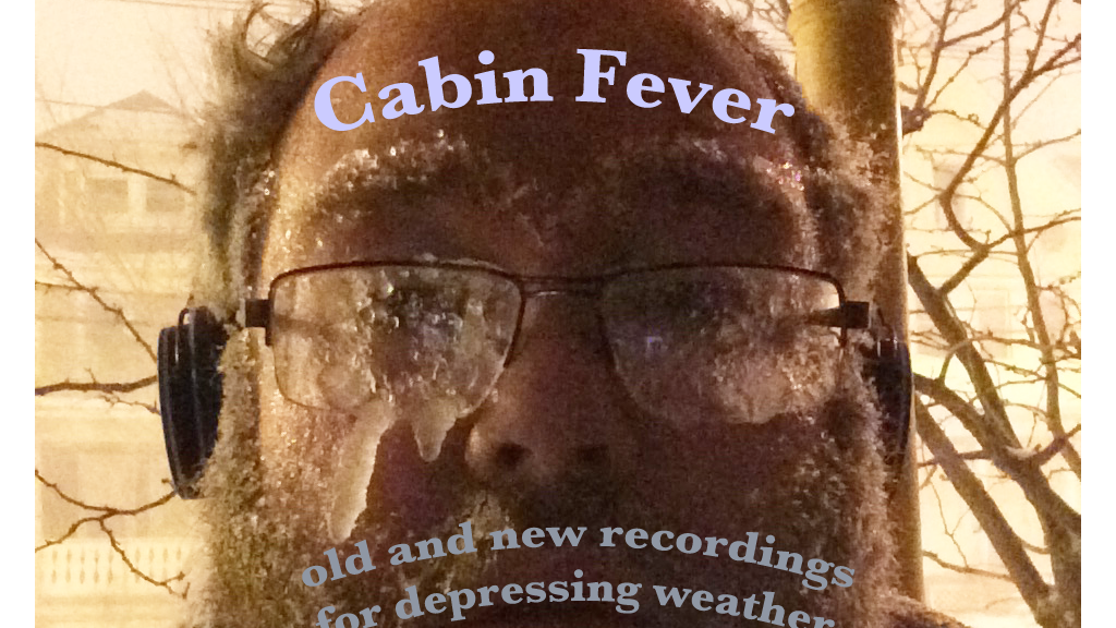 Cabin Fever project video thumbnail