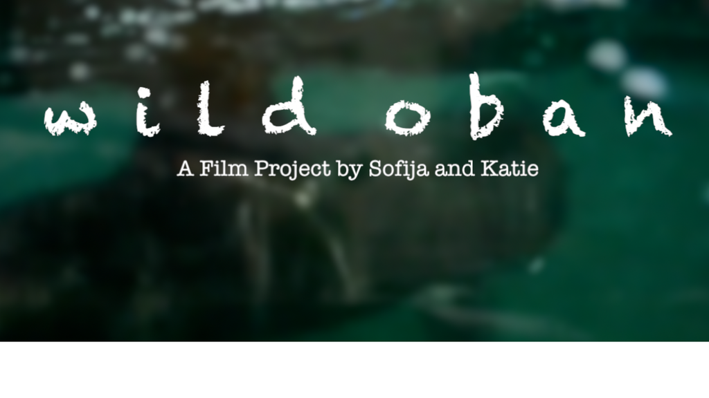 Wild Oban project video thumbnail