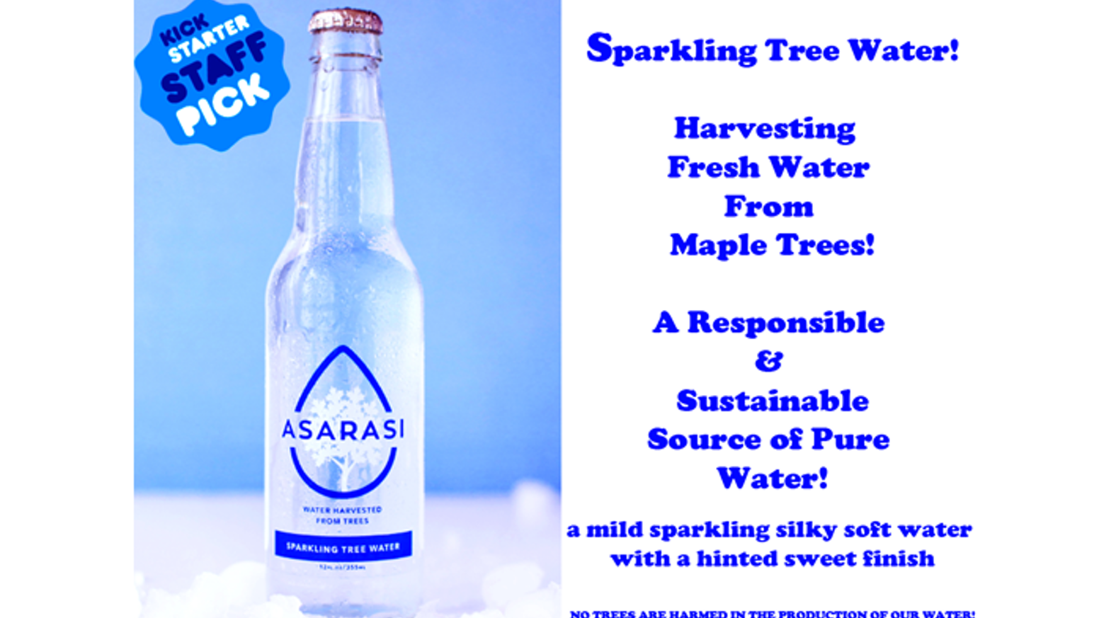 We are harvesting pure water from trees by pioneering the recovery and bottling of the most unique source of renewable water on Earth!