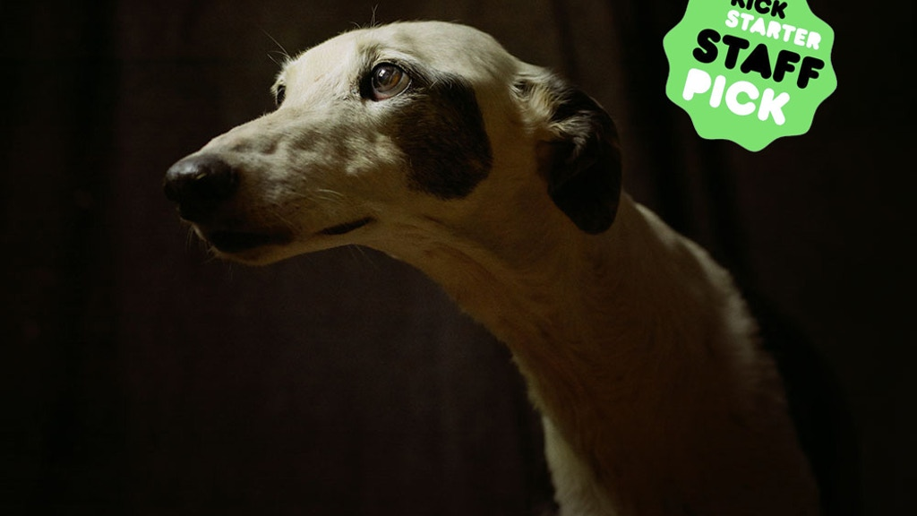 The story of the Spanish Hunting Dog - a photography book project video thumbnail