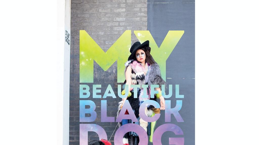 My Beautiful Black Dog project video thumbnail