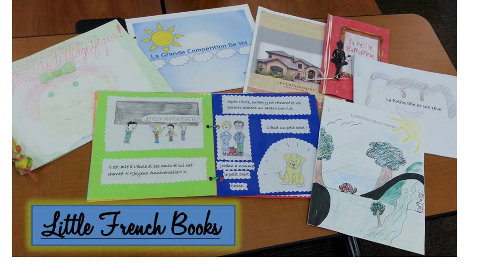 Students from Randolph-Macon College wrote and illustrated French children's books to help underprivileged kids in Haiti. With community support, the stories came to life in hard cover format and were delivered to over 600 grateful schoolchildren.