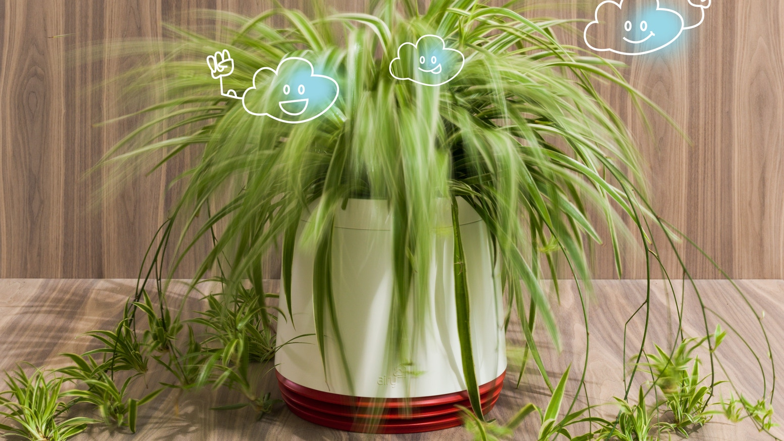 Airy Your Solution Against Indoor Air Pollution By Airy Greentech