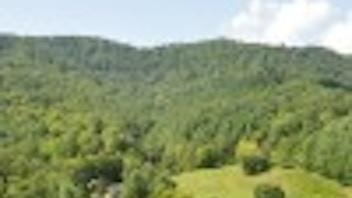 Wilderness Wild Resort