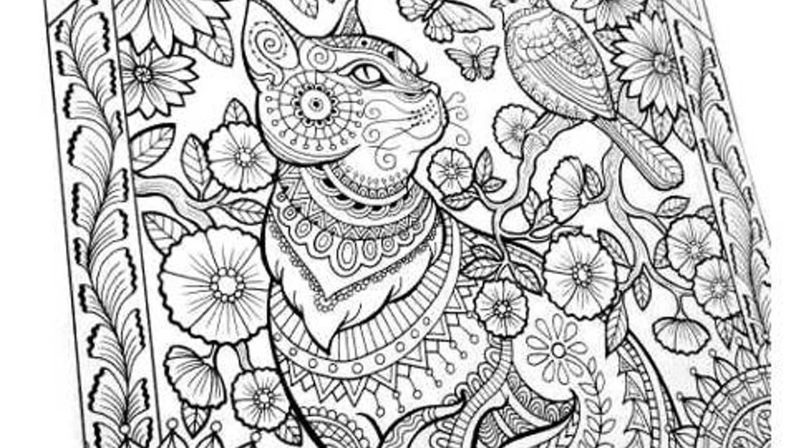 Coloring book for adults, large spiral bound! by Jan Bevins ...