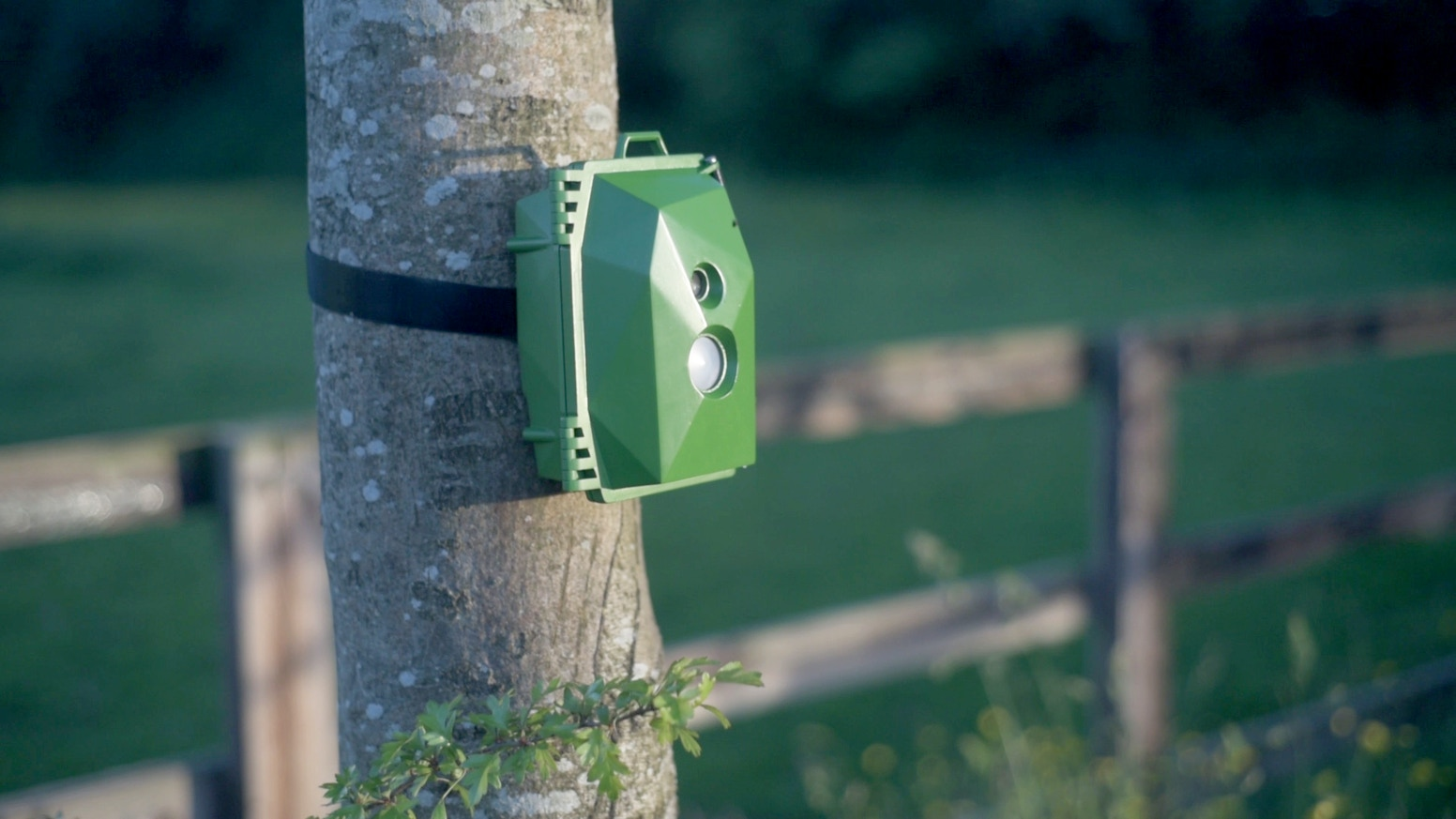 Build your own Pi-powered wildlife camera to capture stunning photos & video and help monitor wildlife as a community of digital makers.