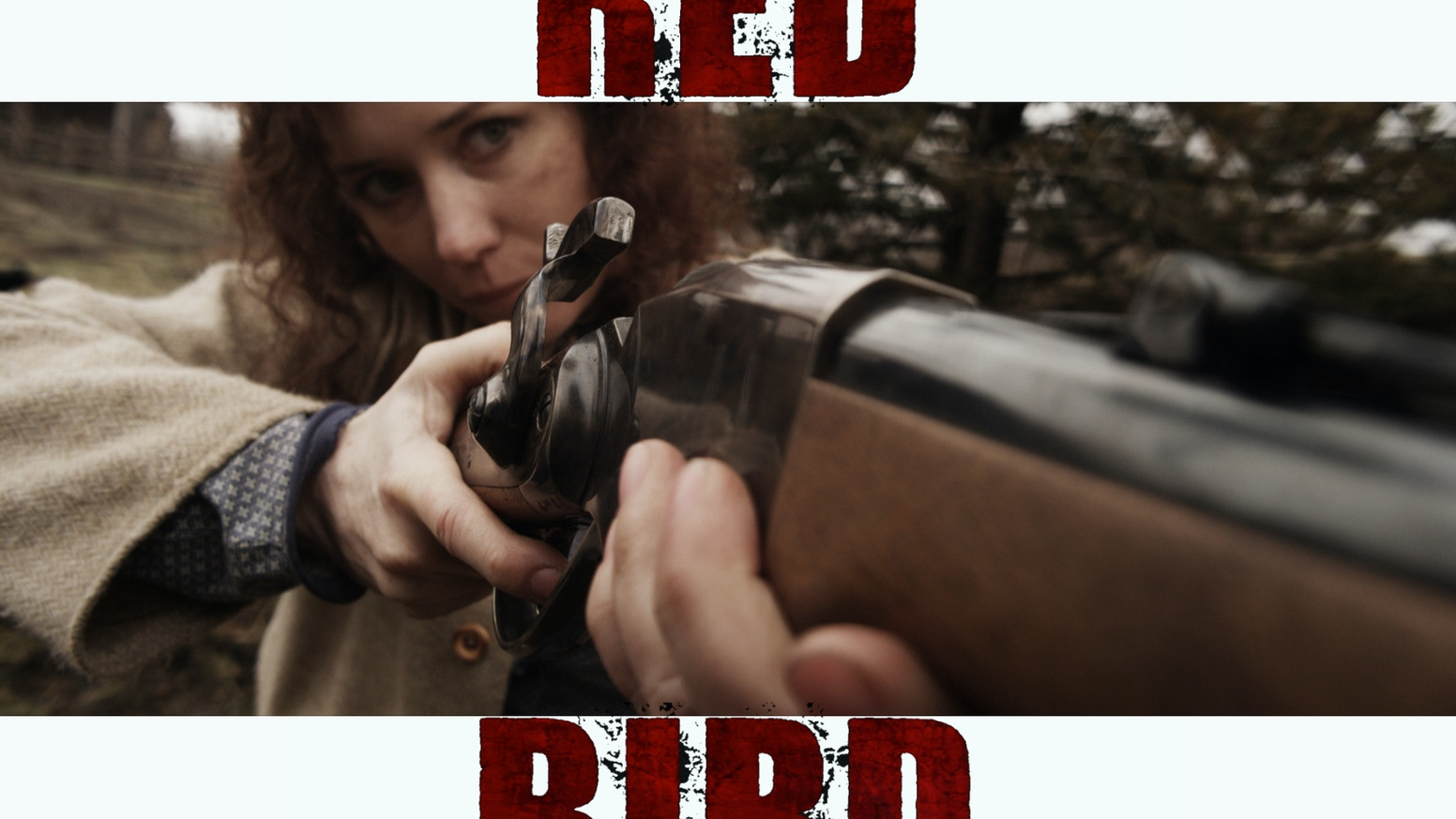 A badass woman gunfighter goes on a bloody quest for revenge against the men who killed her son...