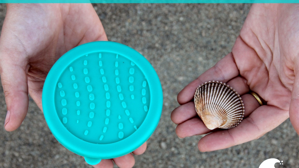 Blue Water Bento Ocean-Friendly Lunchware by ECOlunchbox project video thumbnail
