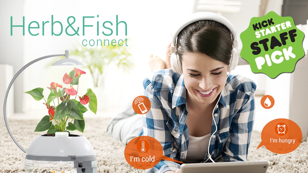 Herb&Fish CONNECT. Smartly Designed project video thumbnail