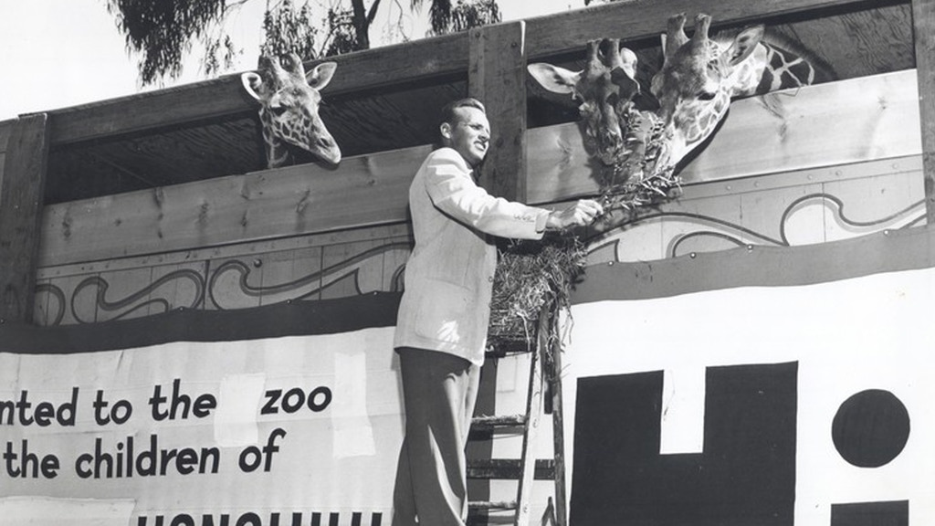 Zoo & Aquarium Video Archive project video thumbnail