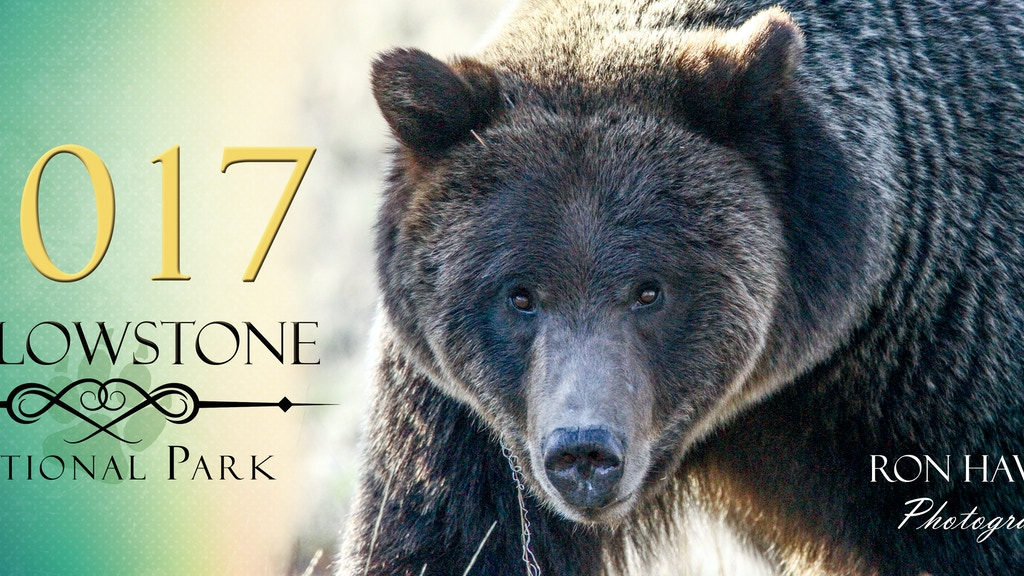Project image for 2017 Yellowstone National Park Calendar