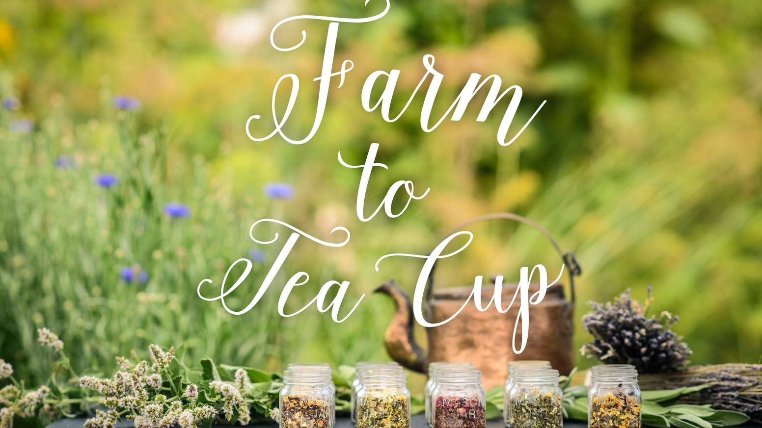 Farm To Tea Cup: Artisan organic tea handcrafted in the beautiful Pacific Northwest using local ingredients.