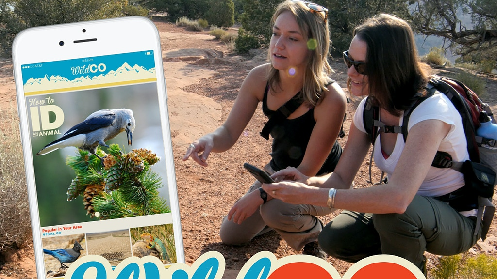 WildCO App –  Wild Colorado Share the Adventure project video thumbnail