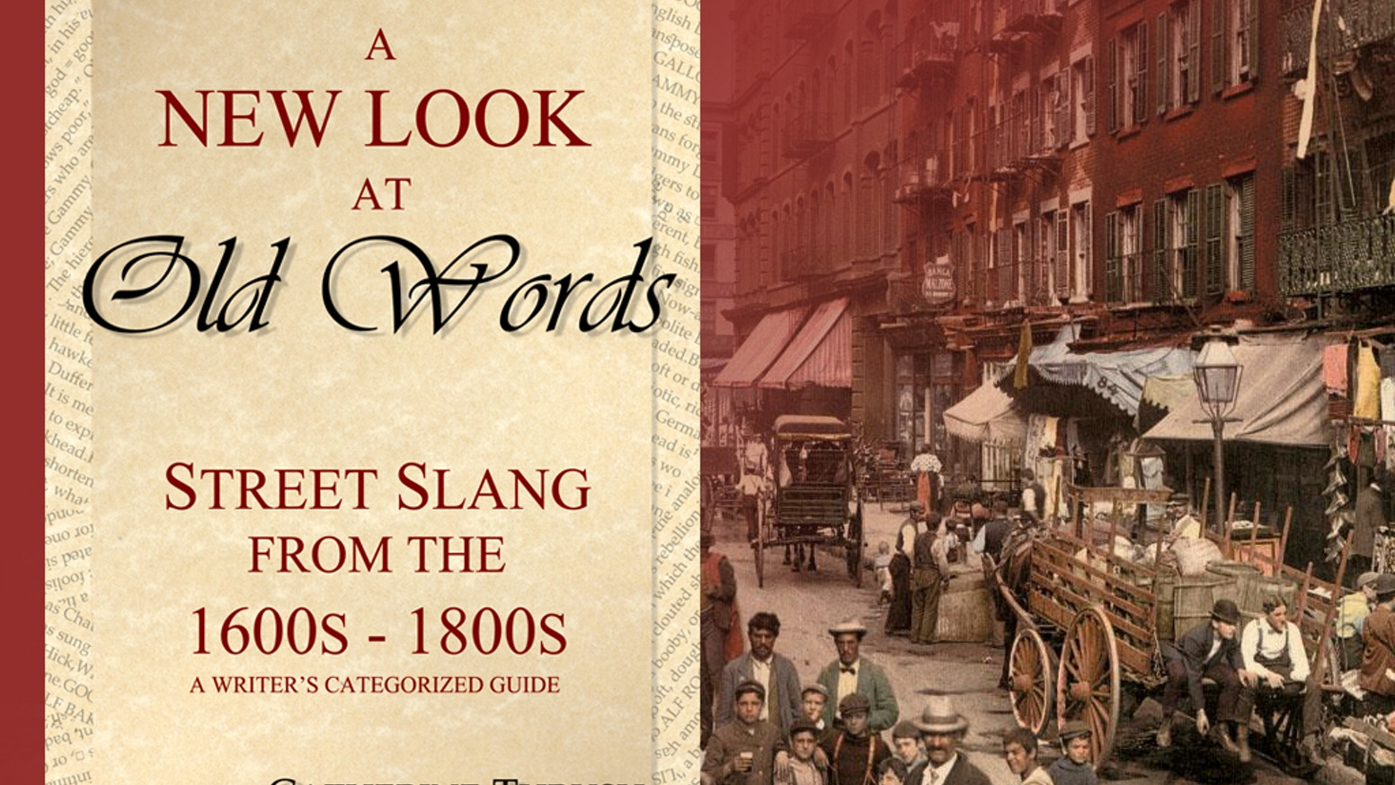 A writer's and word lover's categorized guide to street slang from the 1600s to the 1800s.