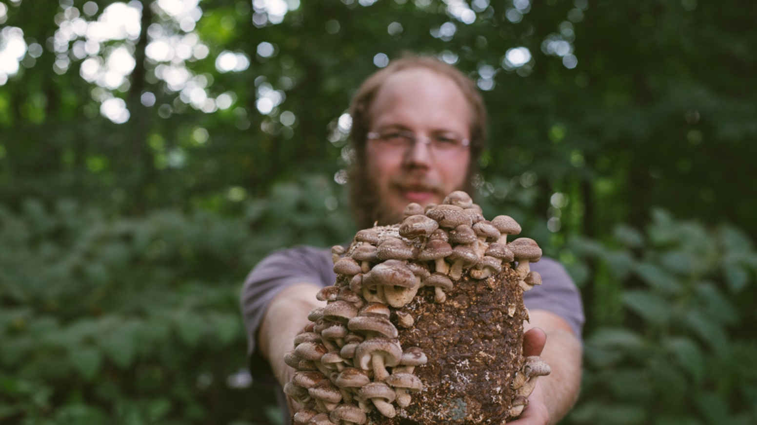 Fungi Ally Mushroom Lab by Fungi Ally — Kickstarter