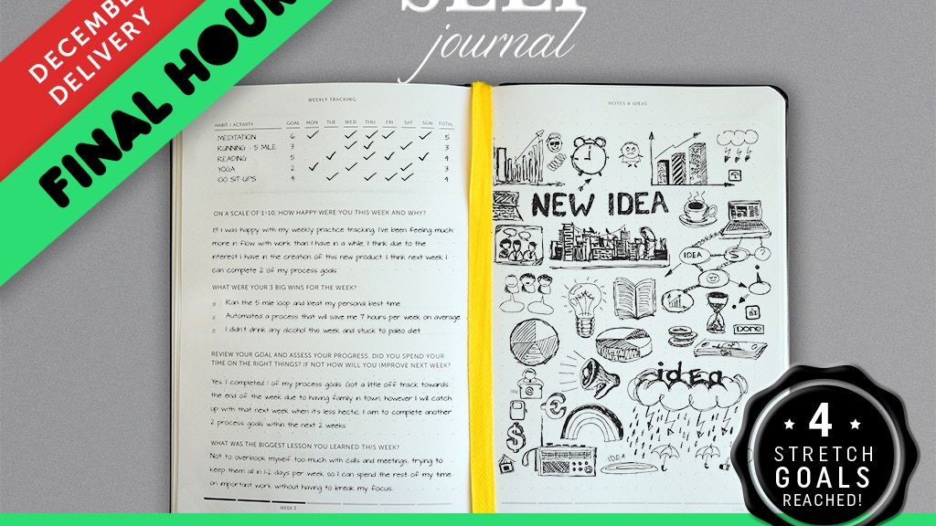 SELF Journal: Your Daily Structure for Success project video thumbnail