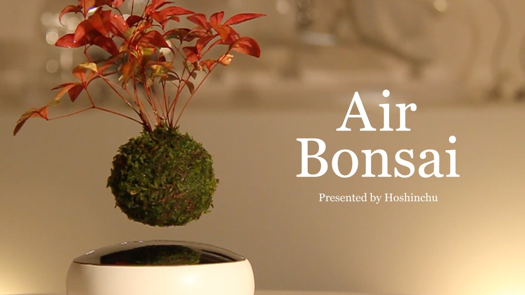 "Air Bonsai | Create your ""little star"" project video thumbnail"