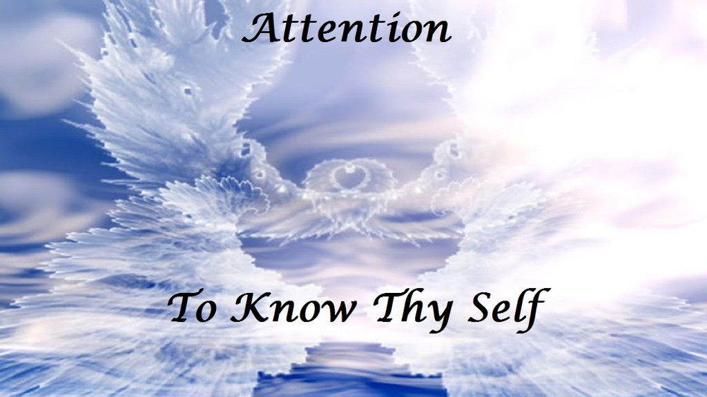 Project image for To Know Thy Self