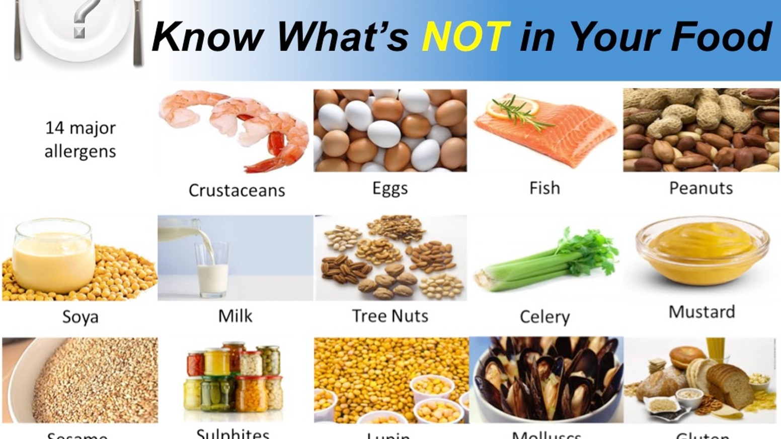 Food Test Network - know what's NOT in your food by Ryan ...