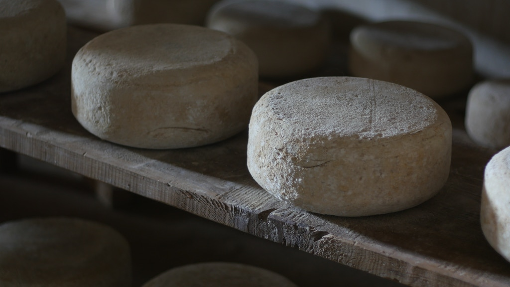 Ligiin Ukhaa: Artisan Cheese in Mongolia project video thumbnail