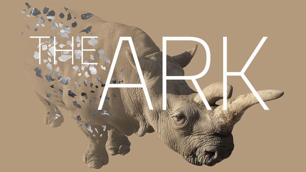 The Ark: a VR film about the world's most endangered animal project video thumbnail