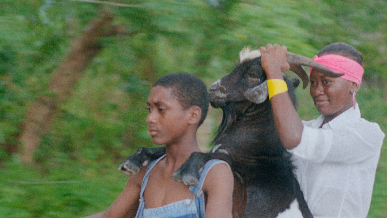 A coming-of-age film about two incompatible siblings and a dead goat.