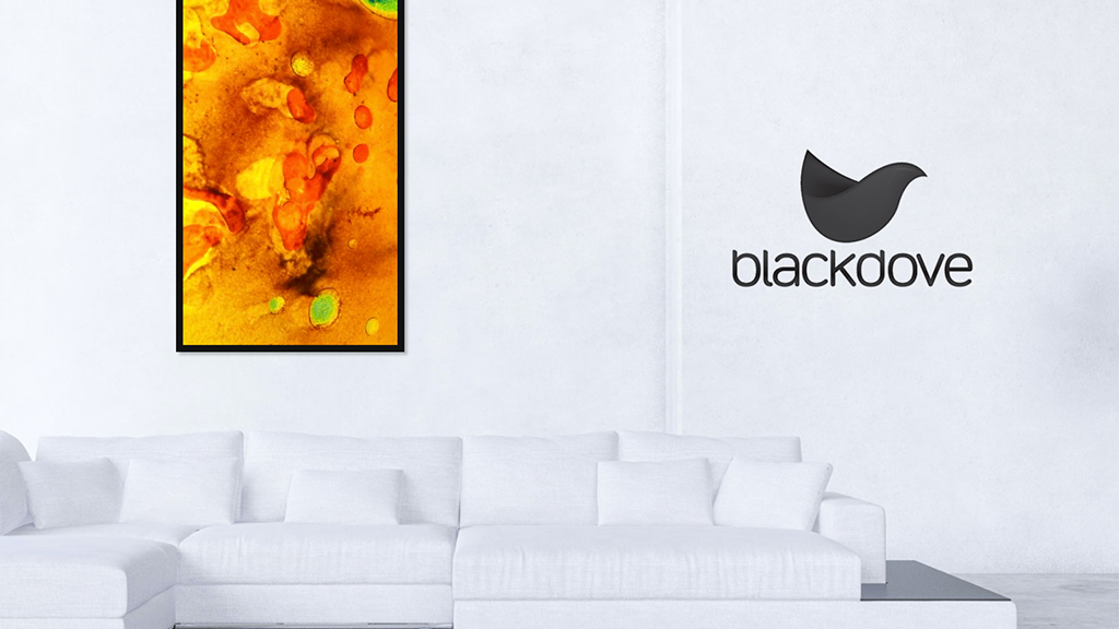 Blackdove Digital Canvas with Integrated Art Gallery project video thumbnail