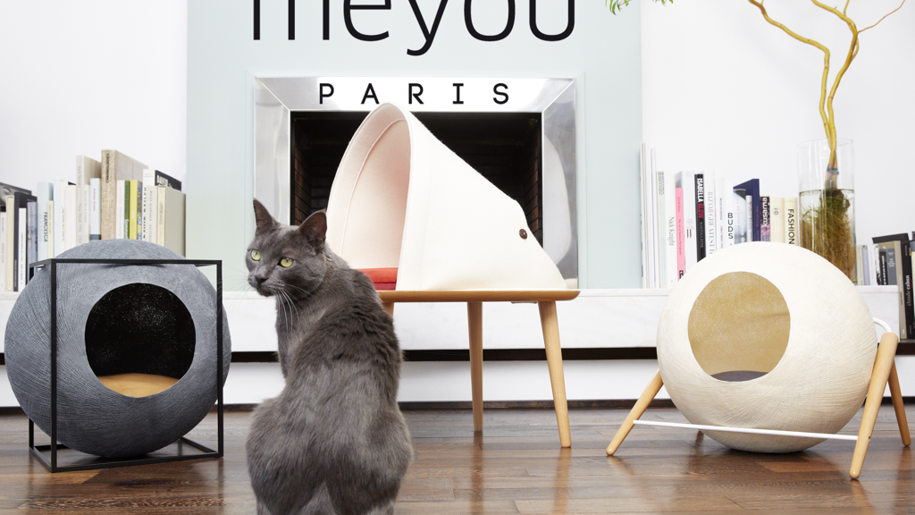 Meyou: Classy Furniture for Discerning Cat project video thumbnail
